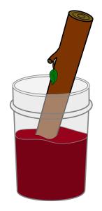 LogJam_Logo1